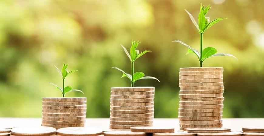 Gde investirati novac u Srbiji - nekretnine, biznis ili nešto treće