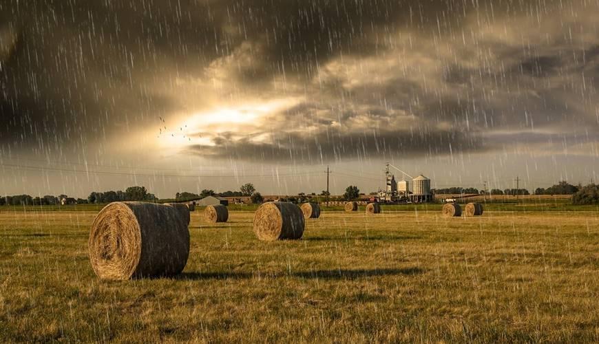 Da li je klima u Srbiji povoljna za poljoprivredu i zašto?